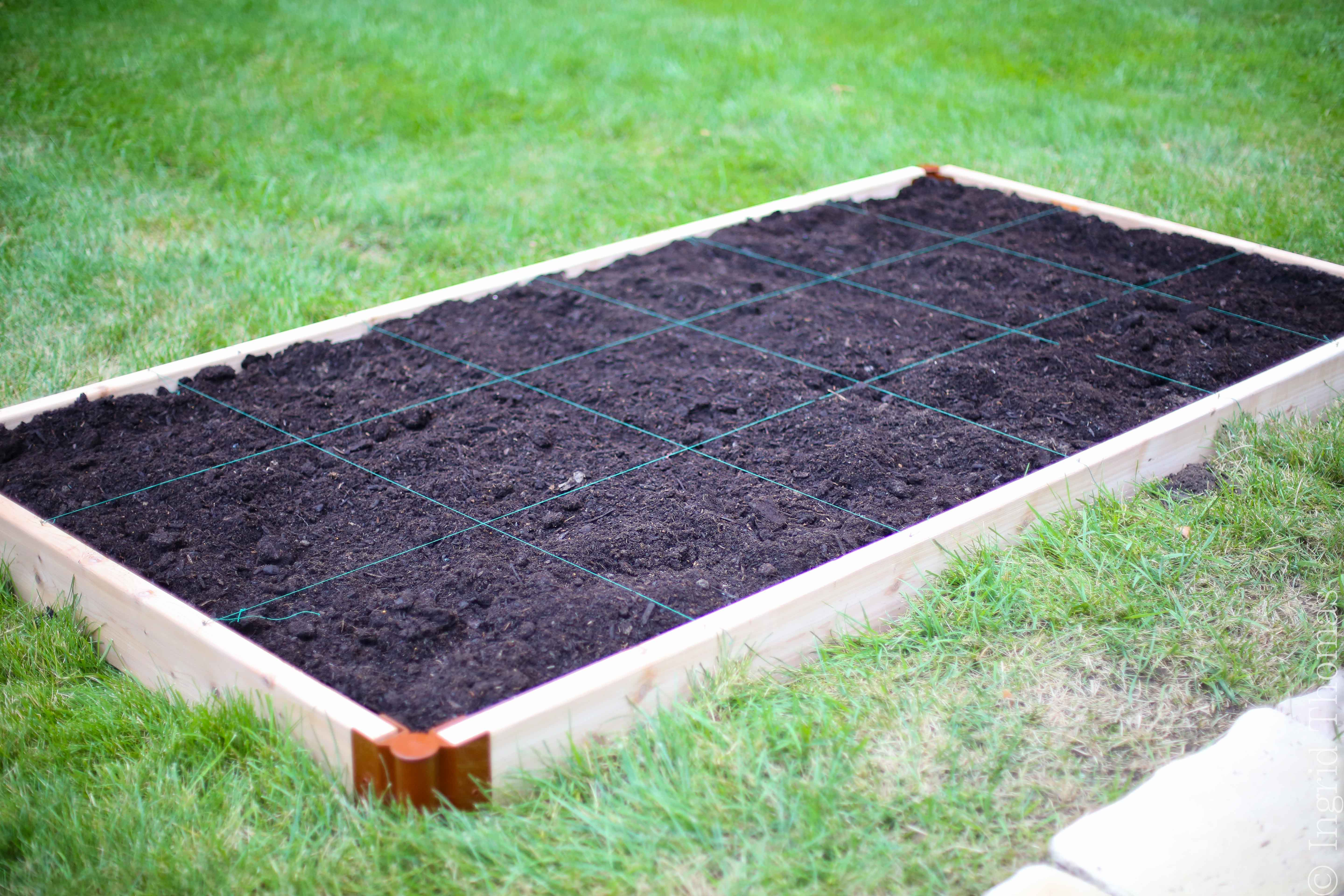 square foot ahem I mean meter gardening the nitty gritty