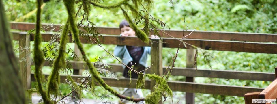 tryon creek park, oregon